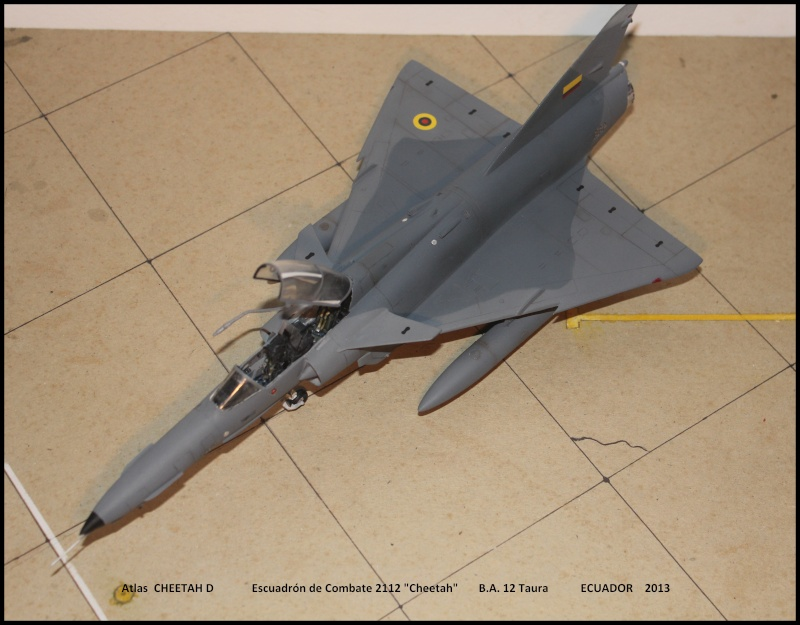 CHEETAH D in SouthAmerica - Page 3 Chet510