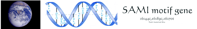 sami-motif-gene