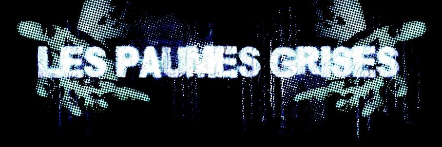 Les Paumes Grises Resist10
