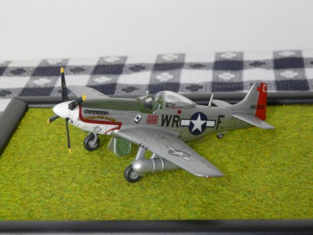 P-51D Mustang P1000910