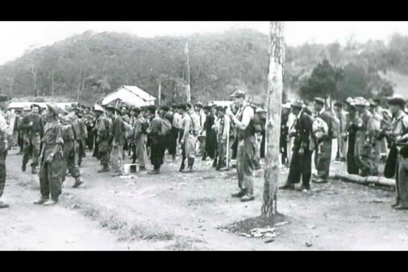 Hmoob & Tsov Rog Fab Kis 1950-54 ( Saib duab nias ntawm no ) 10876_10