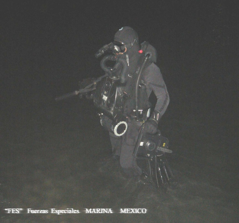 Armée Mexicaine / Mexican Armed Forces / Fuerzas Armadas de Mexico Agz10