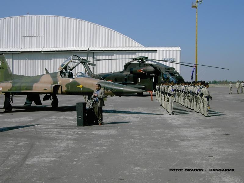 Armée Mexicaine / Mexican Armed Forces / Fuerzas Armadas de Mexico F5cony10
