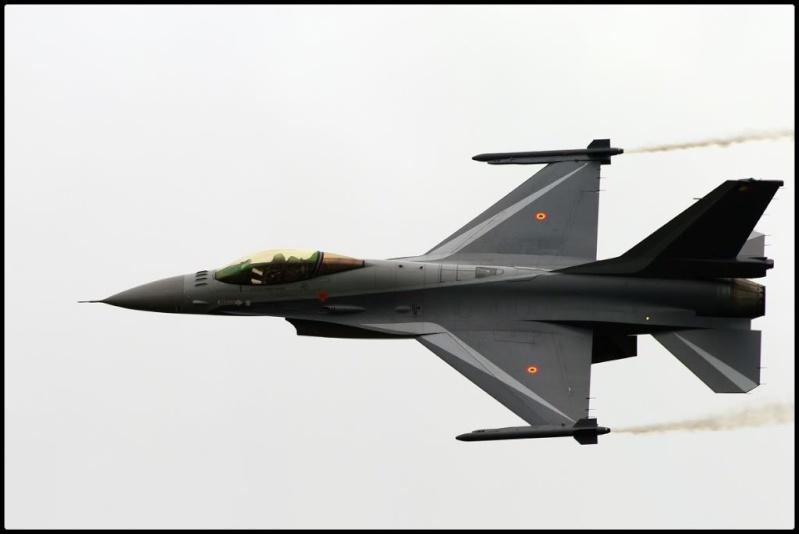 Armée Belge / Defensie van België / Belgian Army  Sanico10
