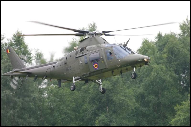 Armée Belge / Defensie van België / Belgian Army  Sanico14