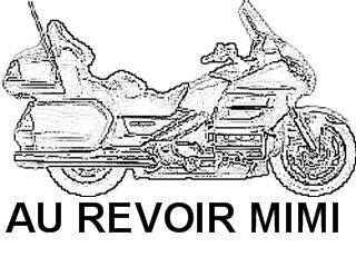 Icônes Goldwing pour TOMTOM Tomtom12