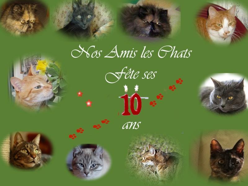 Spécial anniversaire Anniv210