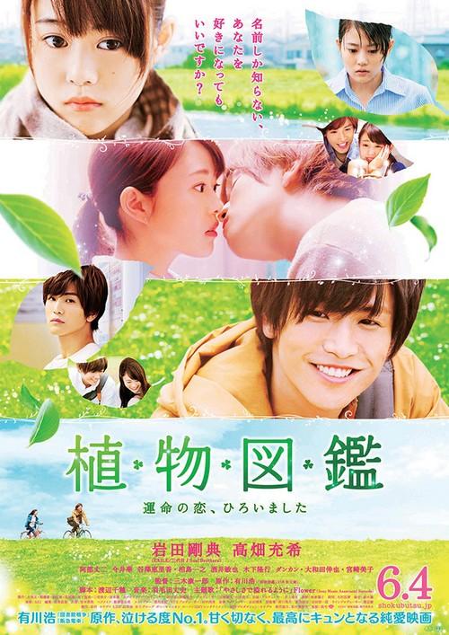 Evergreen Love Evergr10