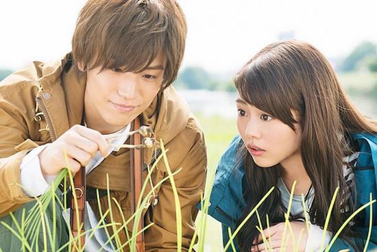 Evergreen Love Shokub10