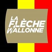 LA FLECHE WALLONNE  --B--  20.04.2016 Cek6na12