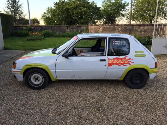 [MaxRen] 205 Rallye - 1988 R210