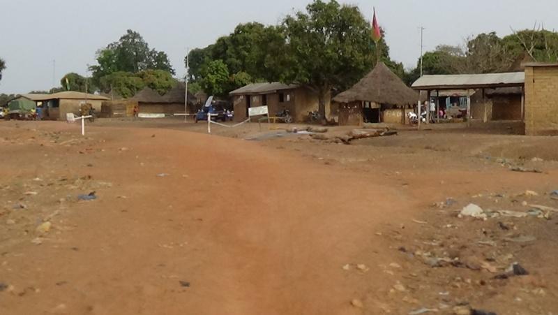 Guinée /Mali / Côte d'Ivoire /Ghana et plus si affinités   2016 - Page 2 Dsc00015