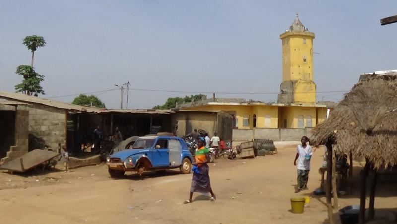 Guinée /Mali / Côte d'Ivoire /Ghana et plus si affinités   2016 - Page 2 Dsc00123