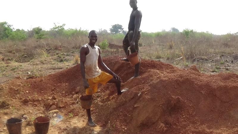 Guinée /Mali / Côte d'Ivoire /Ghana et plus si affinités   2016 - Page 2 Dsc00124