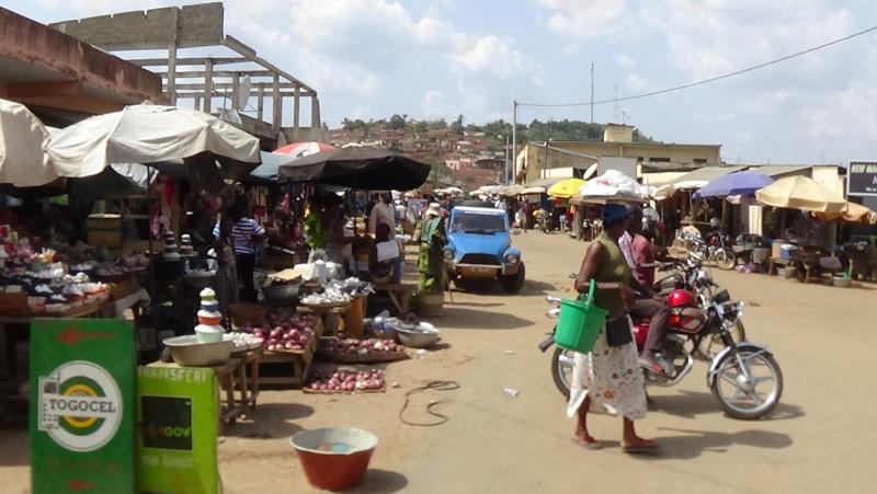 Guinée /Mali / Côte d'Ivoire /Ghana et plus si affinités   2016 - Page 2 Dsc00513