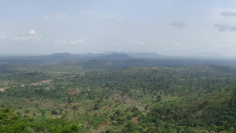 Guinée /Mali / Côte d'Ivoire /Ghana et plus si affinités   2016 - Page 2 Dsc00515