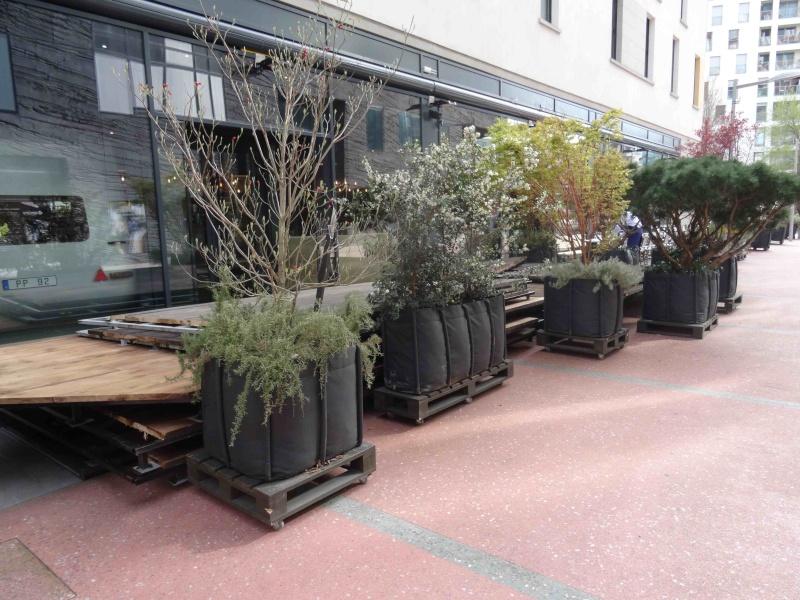 Restaurant La Terrasse Dsc07037