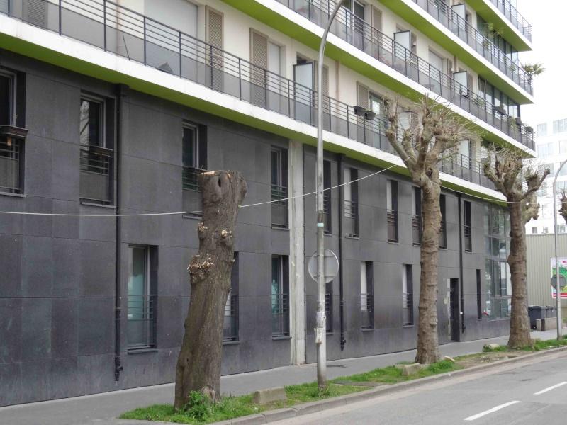 Rue de Meudon - Page 2 Dsc07218