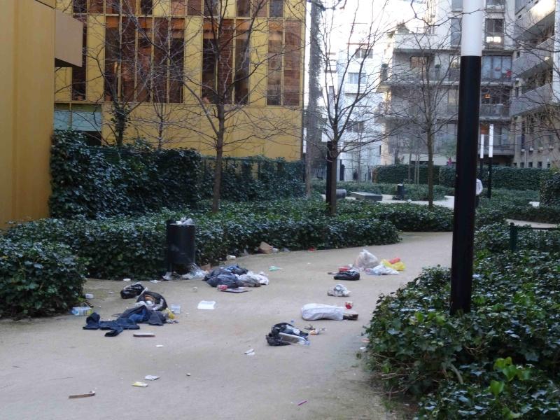 Encombrants, poubelles et caddies - Page 2 Dsc07327