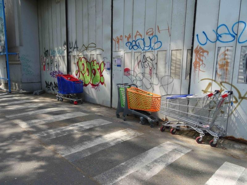 Encombrants, poubelles et caddies - Page 2 Dsc08485