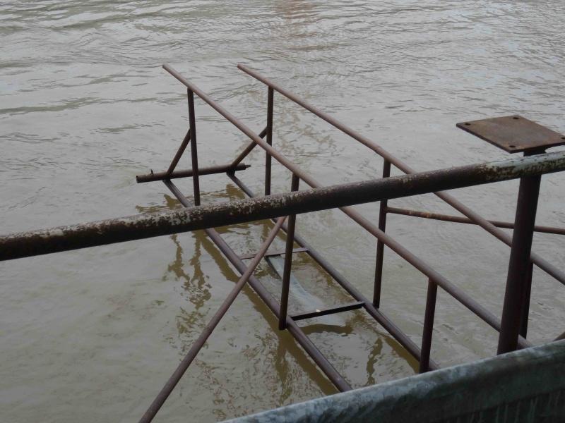 Crues de la Seine Dsc08720