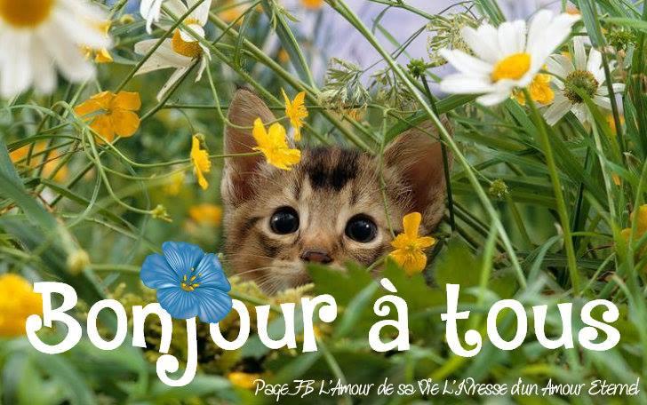 samedi 9 avril Bonjou18