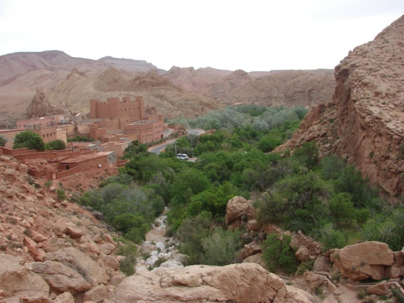 Retour Maroc avril 2016 04710