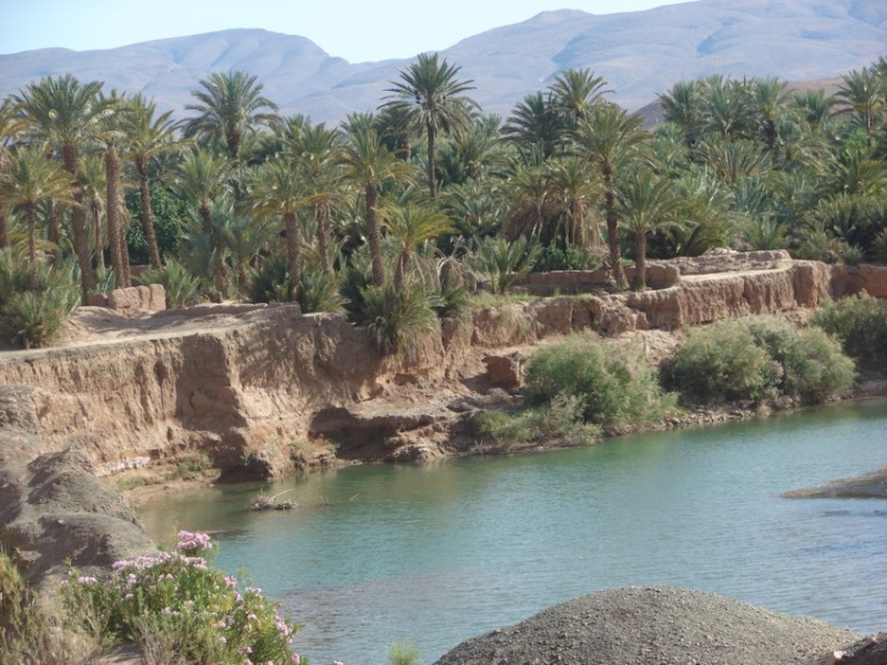 Retour Maroc avril 2016 05810