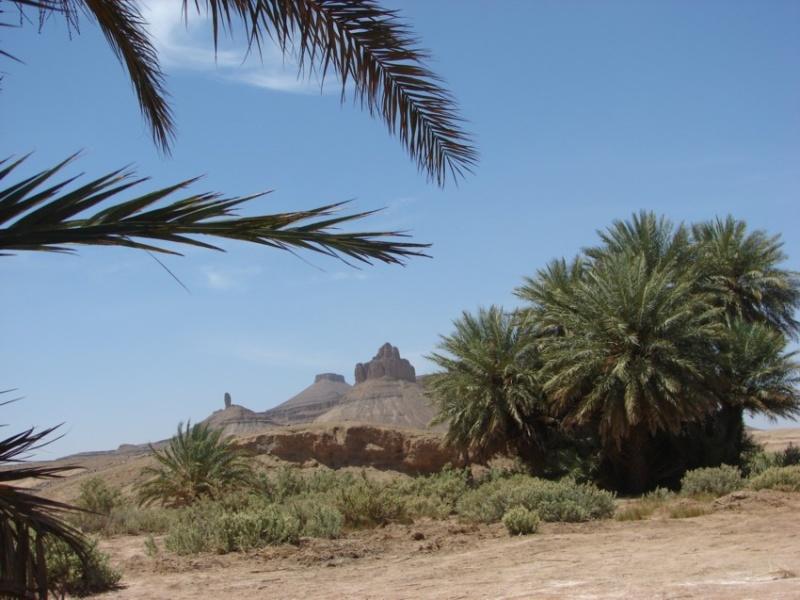 Retour Maroc avril 2016 - Page 2 06610
