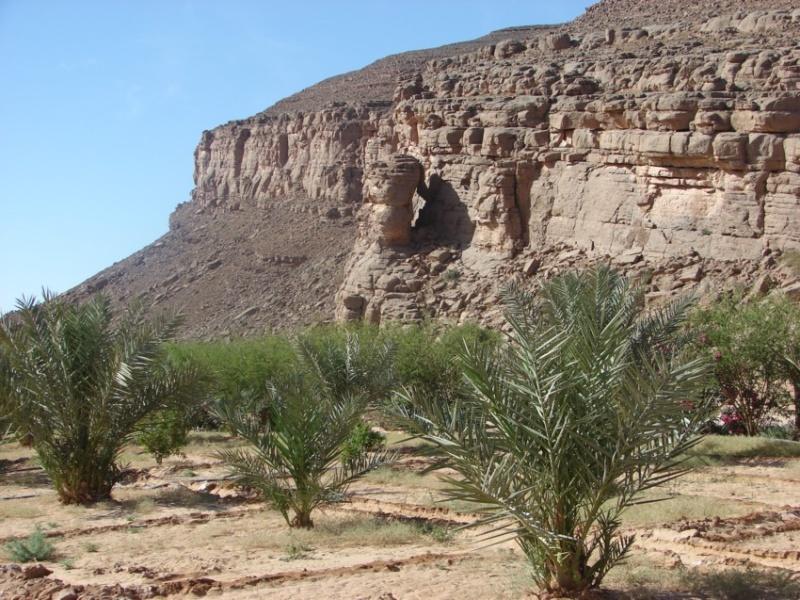 Retour Maroc avril 2016 - Page 2 11710