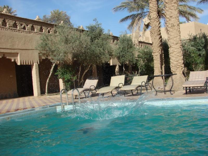 Retour Maroc avril 2016 - Page 2 18910