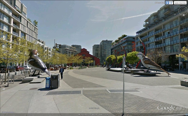 STREET VIEW : Les animaux - Page 10 Piafs10