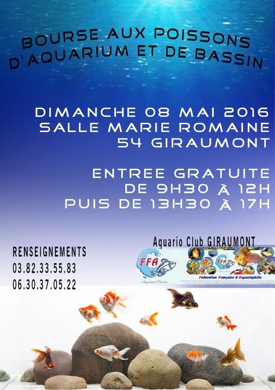 Bourse à Giraumont - 8 mai 2016 Giraum10