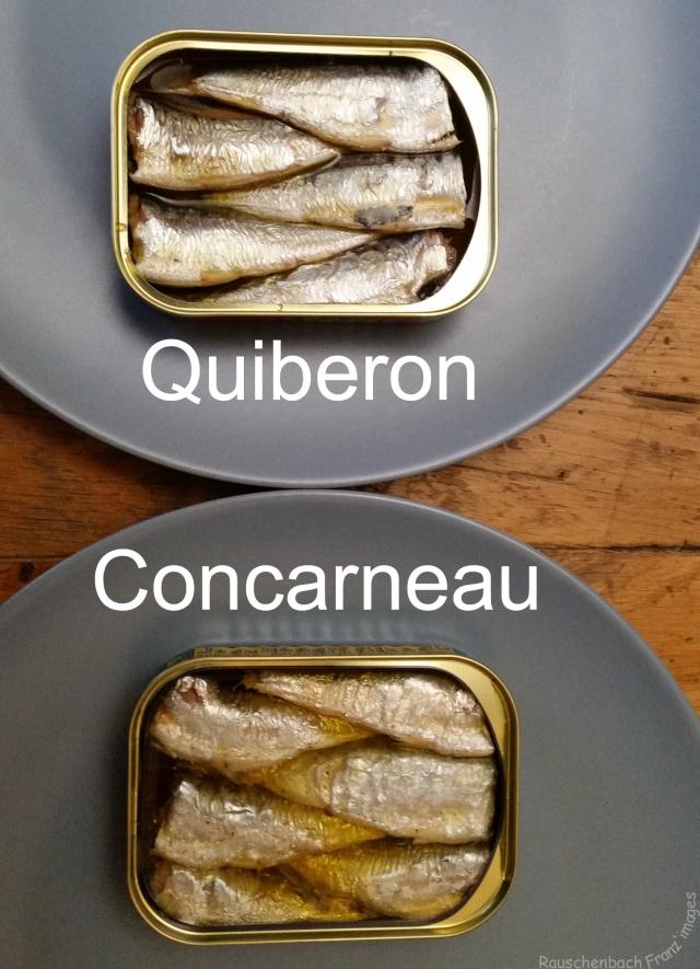 Puxisardinophiles (collectionneurs de boîtes de sardines) - Page 2 Sardin11