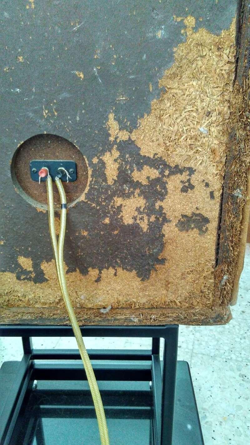 Rebuilding a pair of vintage Sansui speakers SP-X7700 Img_2045