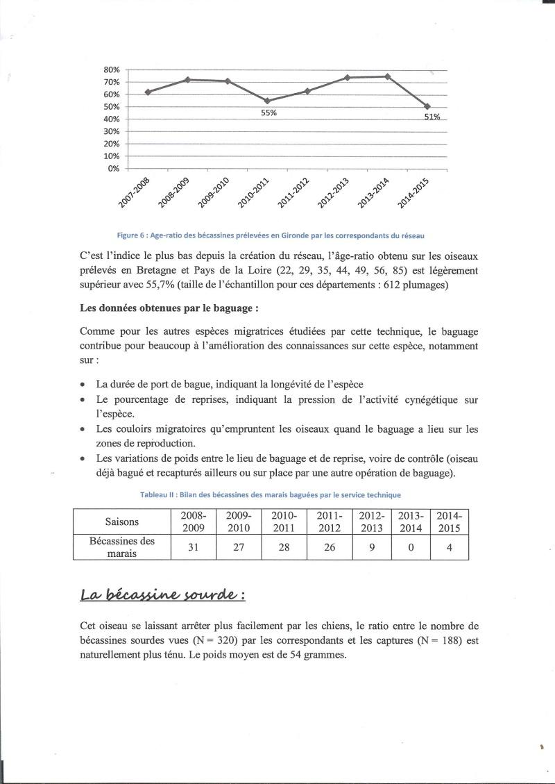 Réseau bécassines bilan saison 14/15 Gironde Rap710