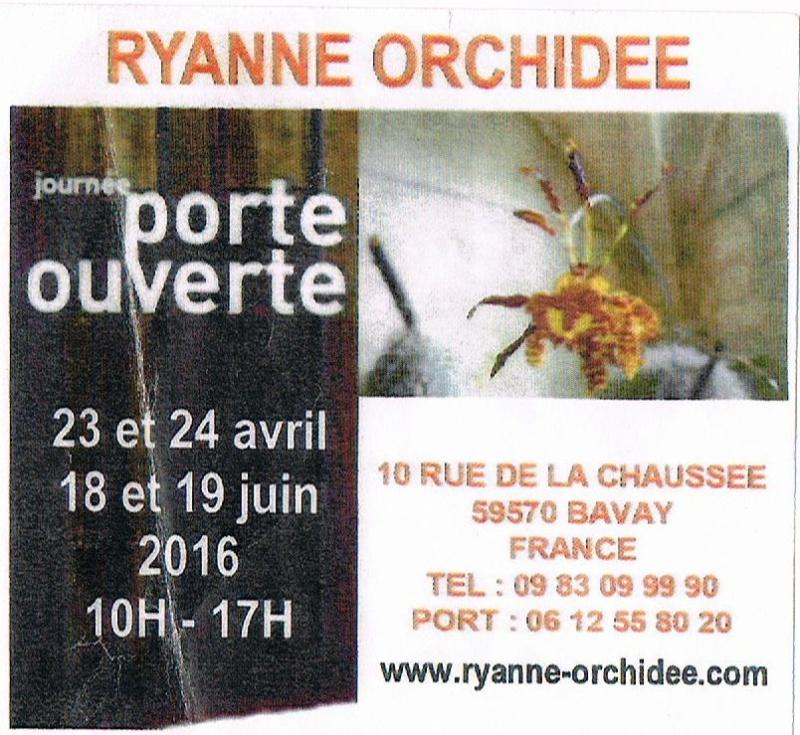 Dates des expos d'orchidées en 2016 - Page 5 00111