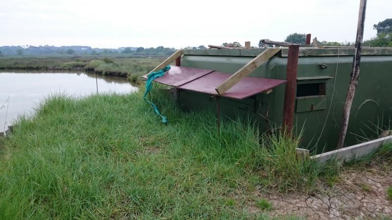 Balade sur le Bassin d'Arcachon 00810