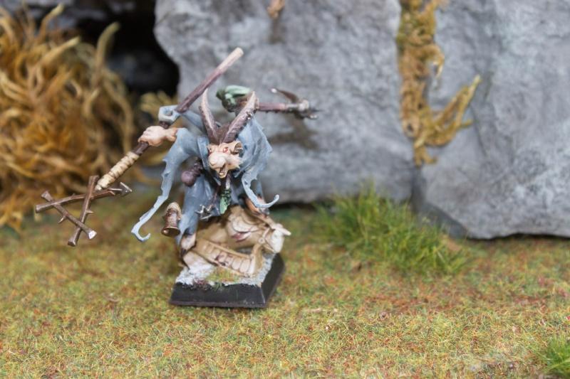 Le Clan Skryshin Img_0316