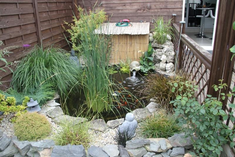 Filtre bassin  Img_0710