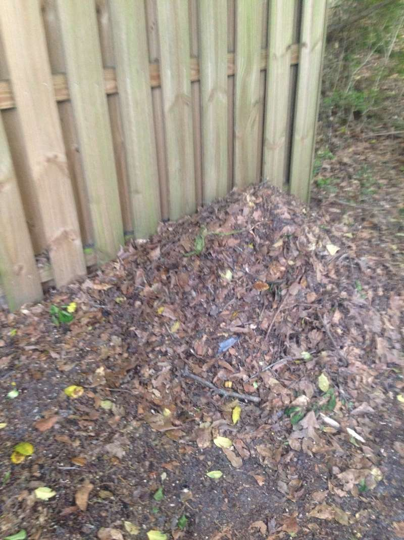 WANTED: Pictures of Compost Bins 2016-060