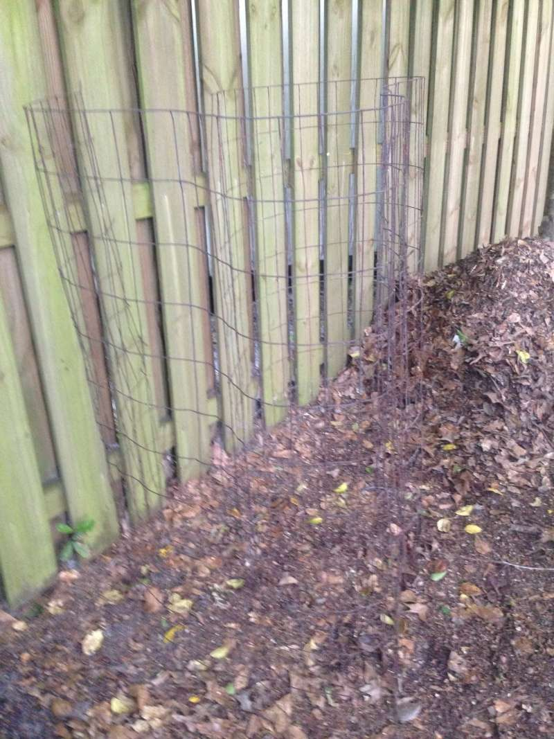 WANTED: Pictures of Compost Bins 2016-063