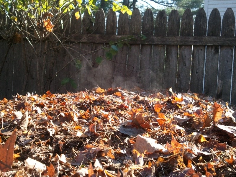 WANTED: Pictures of Compost Bins - Page 2 2012-110