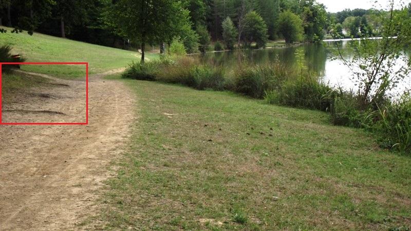 Le Lac 2  - Page 3 Dscf5510
