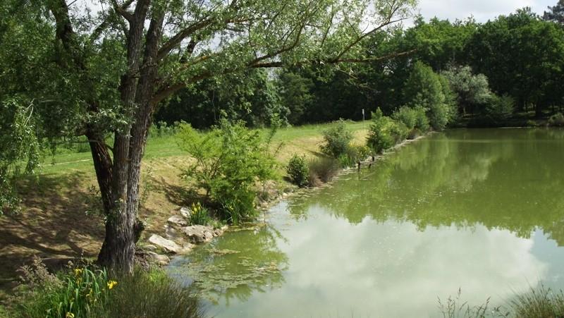 Lac 3 Dscf5916