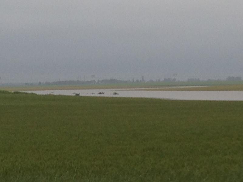 Inondations Img_1412