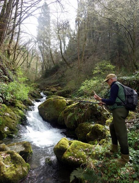 ruisseau - Le ruisseau des pervenches avec Bernard... 311