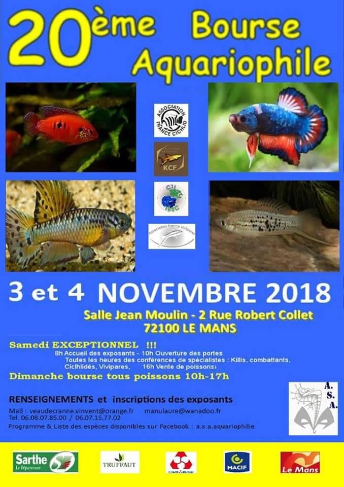 Bourse  A S A LE MANS 41360611
