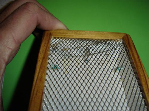 Pêche à la mouche naturelle Detail14