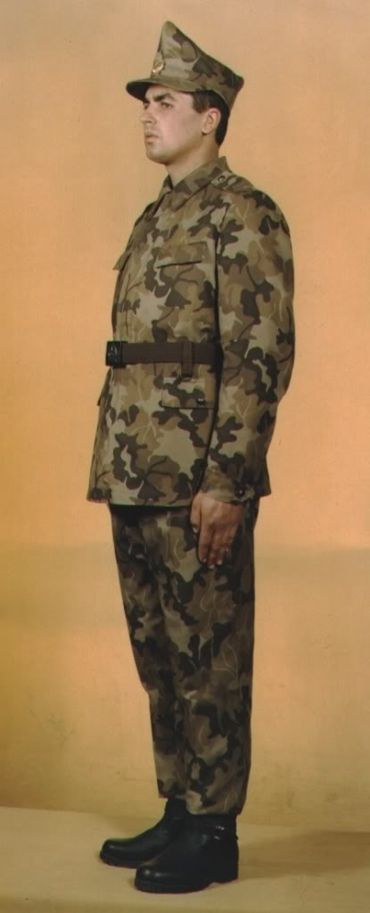 Romanian camouflage uniform designations Tinuta10